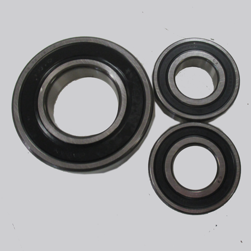 BS1 - Rotor Shaft Bearing Set 125/150